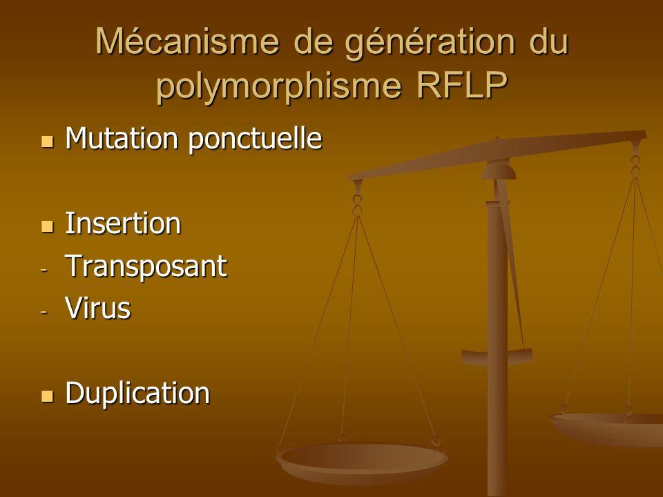 Mécanisme de génération du polymorphisme RFLP