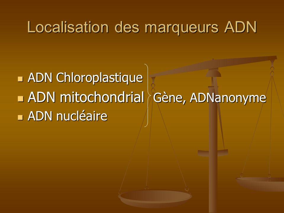 Localisation des marqueurs ADN