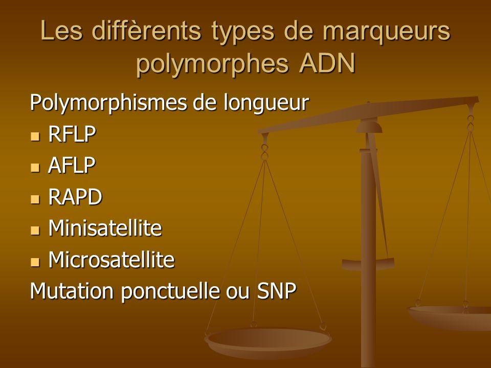 Les diffèrents types de marqueurs polymorphes ADN