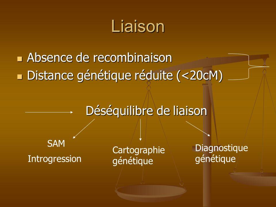 Liaison Absence de recombinaison Distance génétique réduite (<20cM)