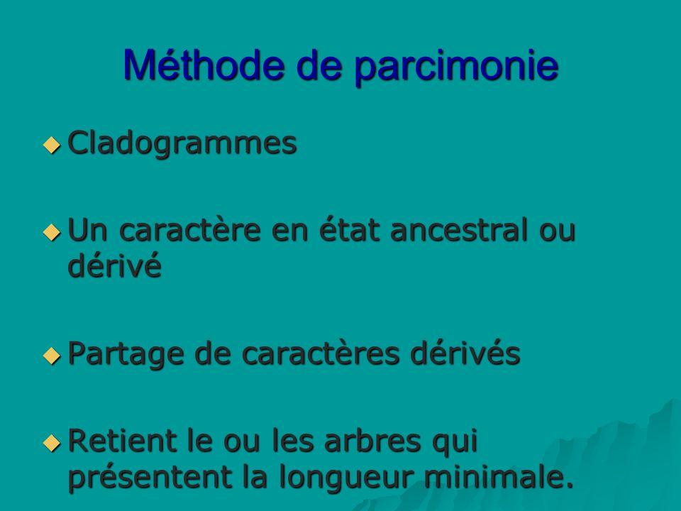 Méthode de parcimonie Cladogrammes