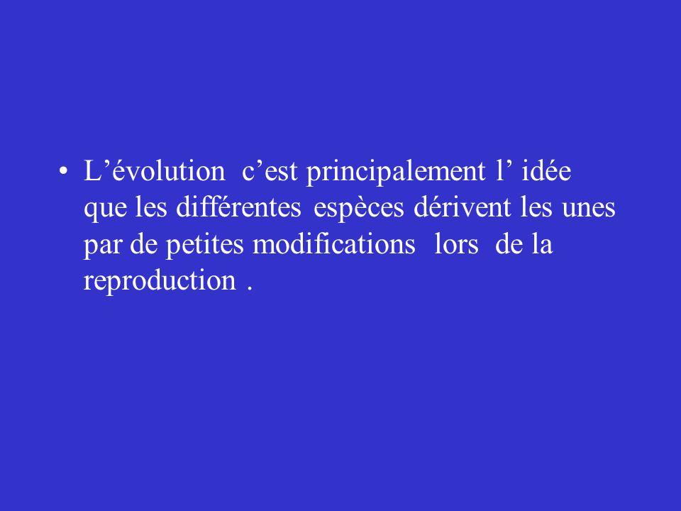 L'évolution c'est principalement l' idée que les différentes espèces dérivent les unes par de petites modifications lors de la reproduction .