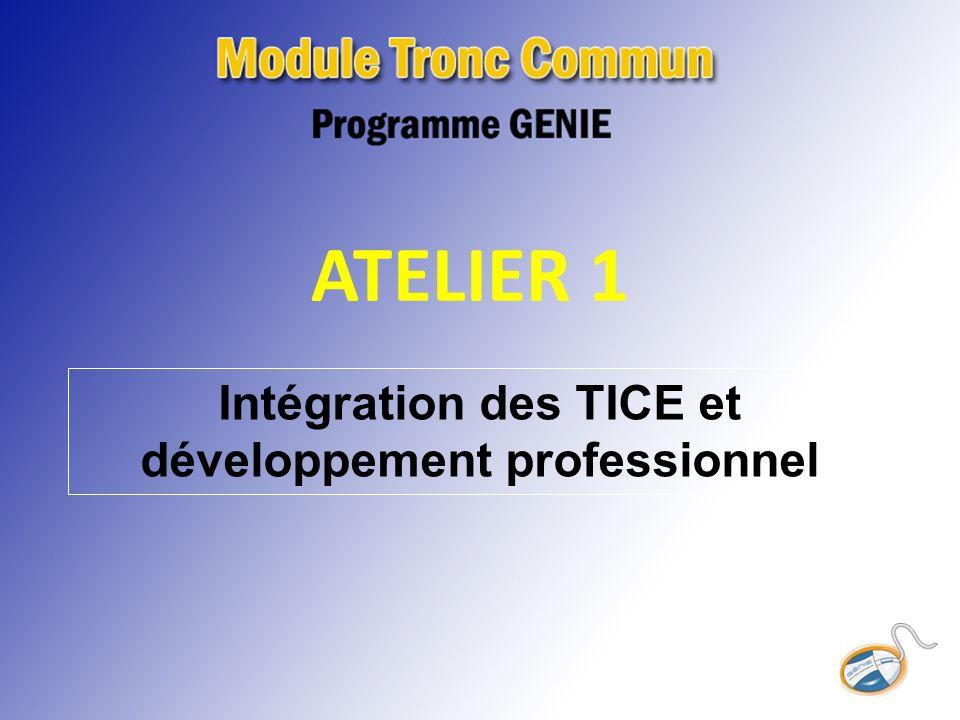 Intégration des TICE et développement professionnel