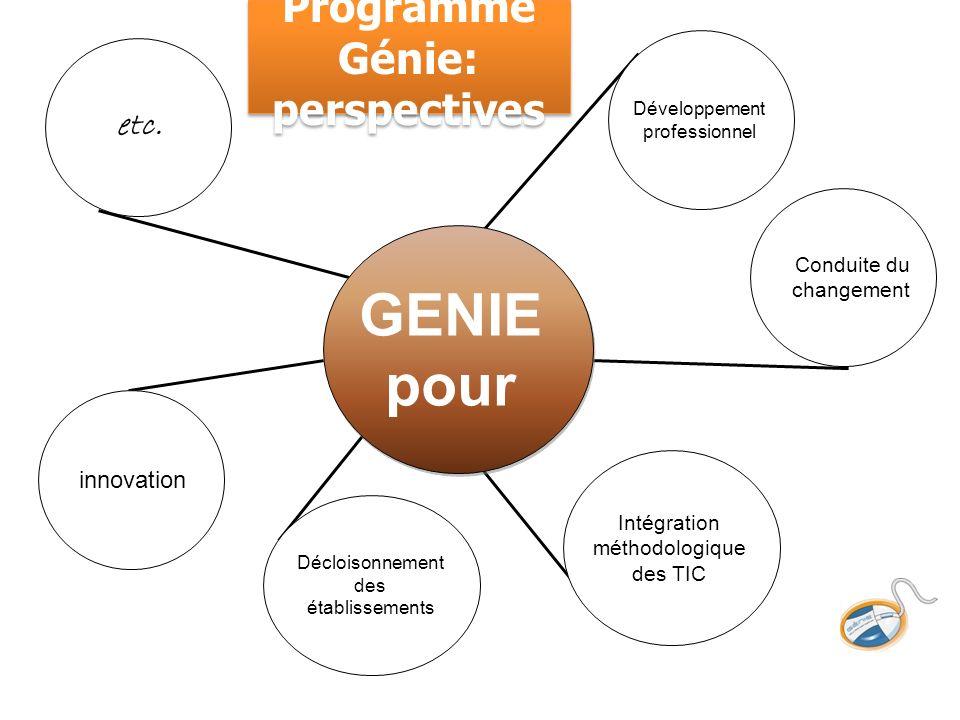 Programme Génie: perspectives