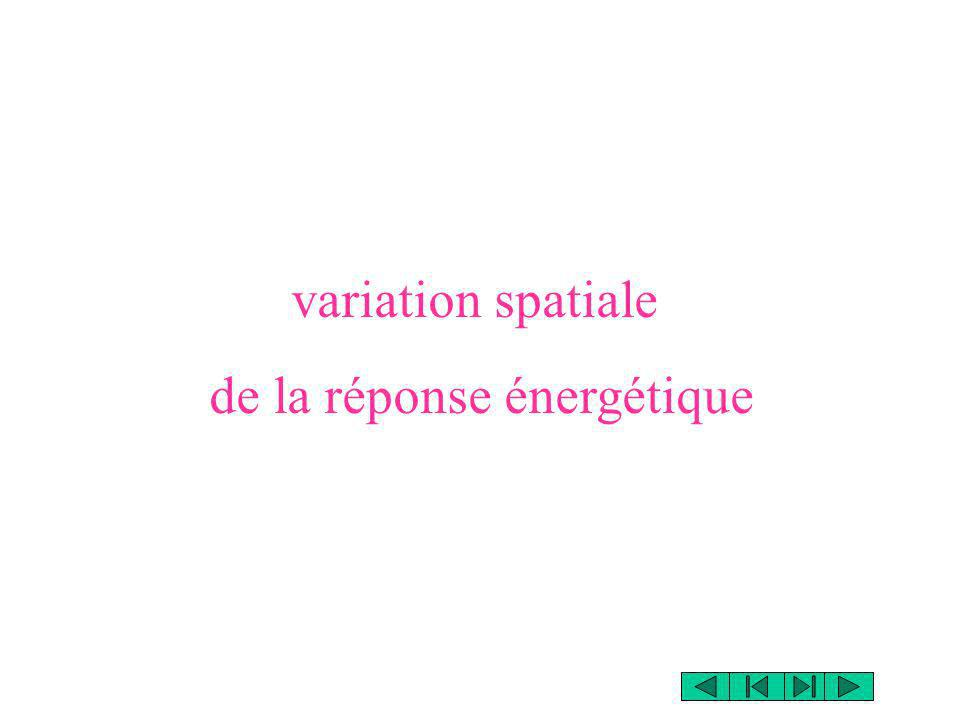 de la réponse énergétique