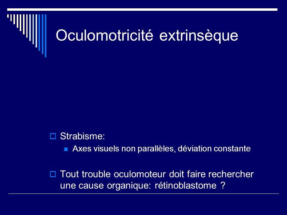 Oculomotricité extrinsèque