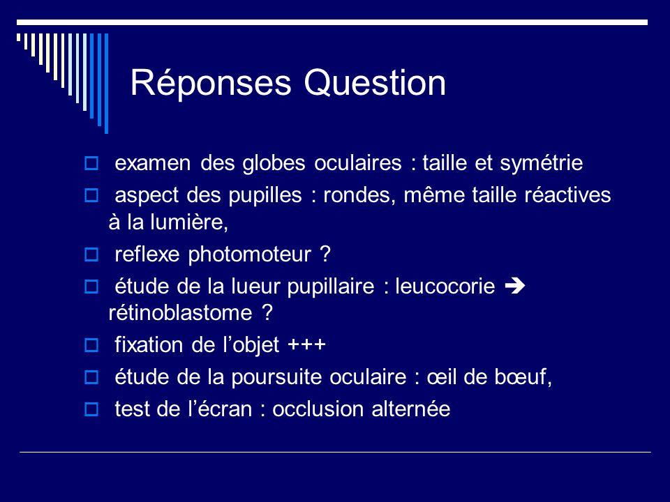 Réponses Question examen des globes oculaires : taille et symétrie