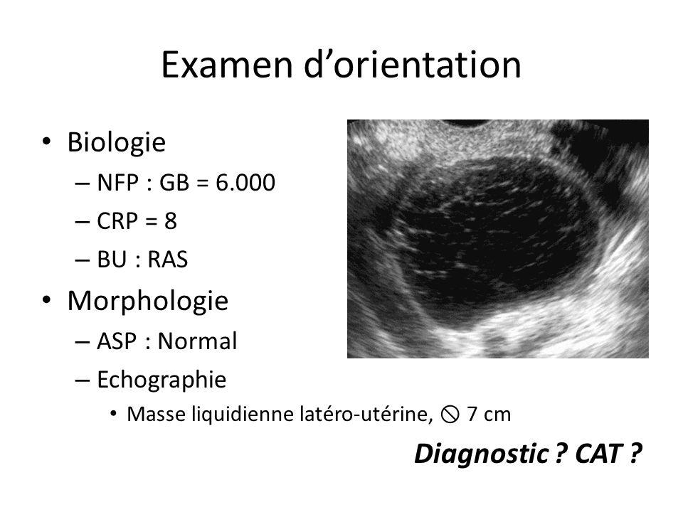 Examen d'orientation Biologie Morphologie Diagnostic CAT