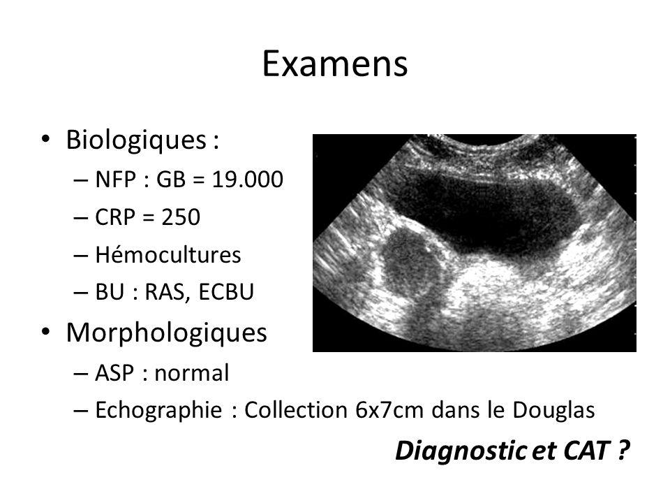 Examens Biologiques : Morphologiques Diagnostic et CAT