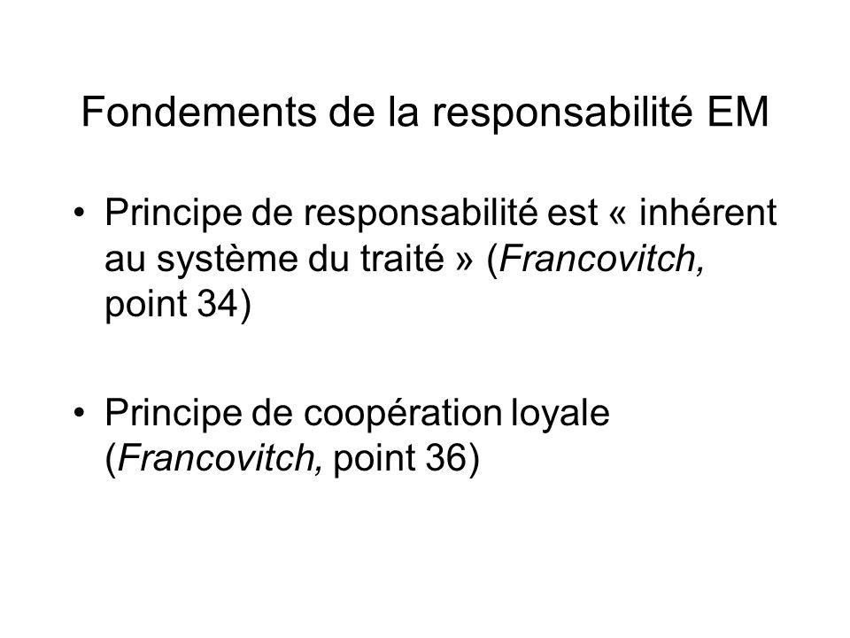 Fondements de la responsabilité EM