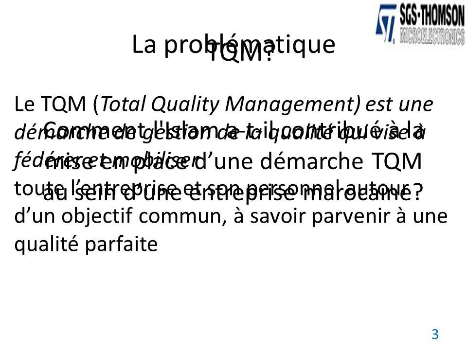 La problématique TQM Le TQM (Total Quality Management) est une démarche de gestion de la qualité qui vise à fédérer et mobiliser.