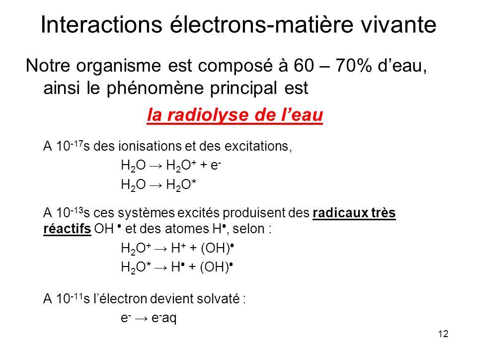Interactions électrons-matière vivante