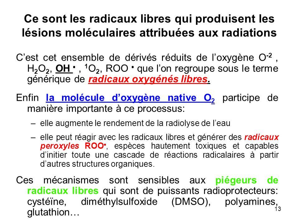 Ce sont les radicaux libres qui produisent les lésions moléculaires attribuées aux radiations