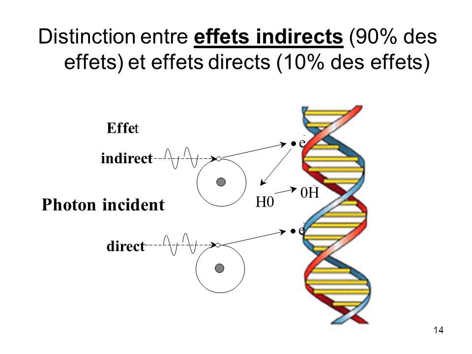 Distinction entre effets indirects (90% des effets) et effets directs (10% des effets)