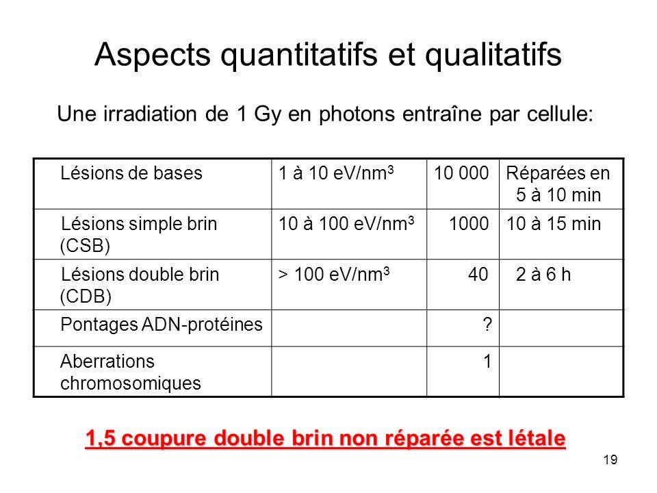 Aspects quantitatifs et qualitatifs