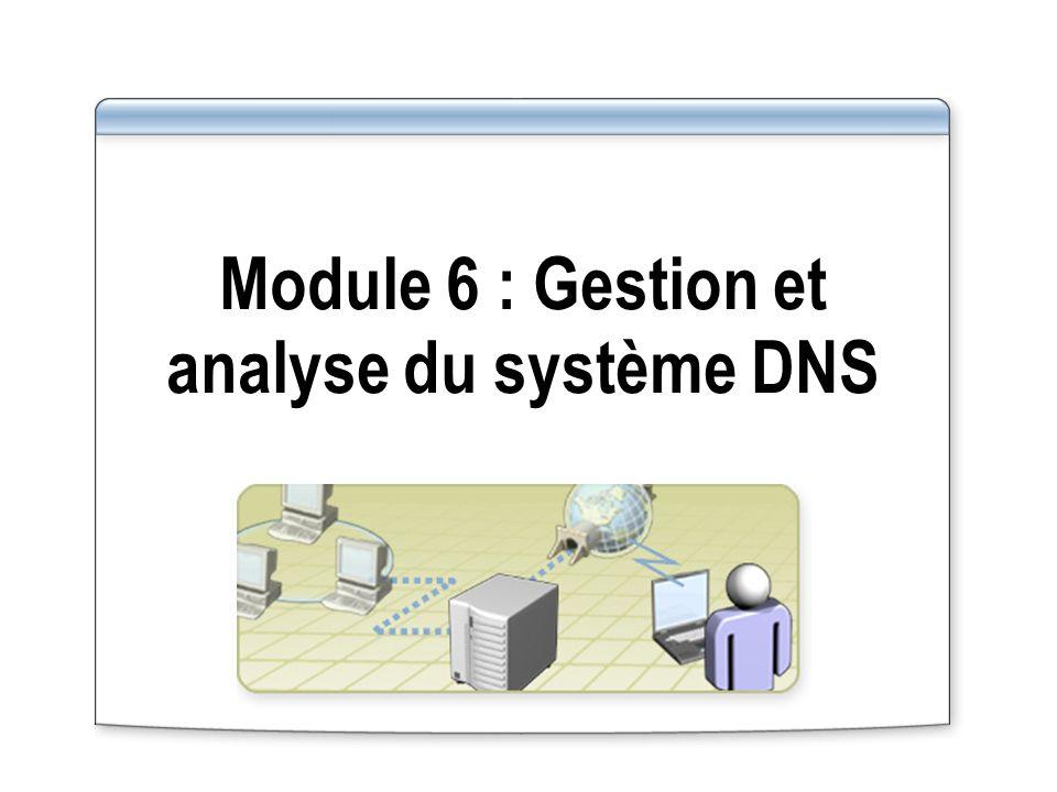 Module 6 : Gestion et analyse du système DNS