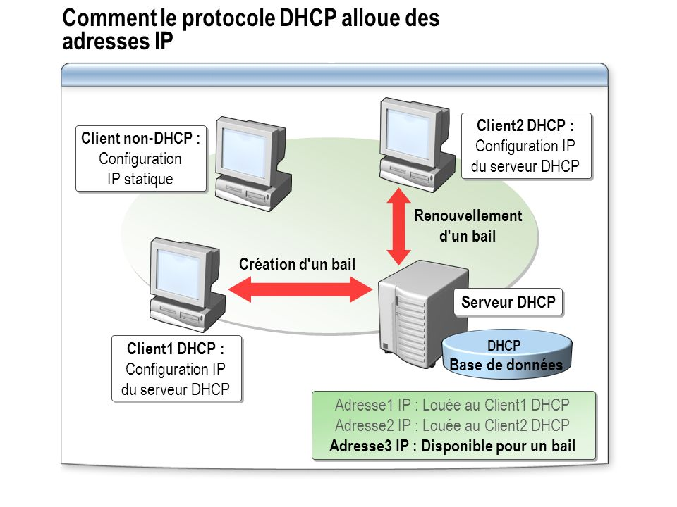 Comment le protocole DHCP alloue des adresses IP