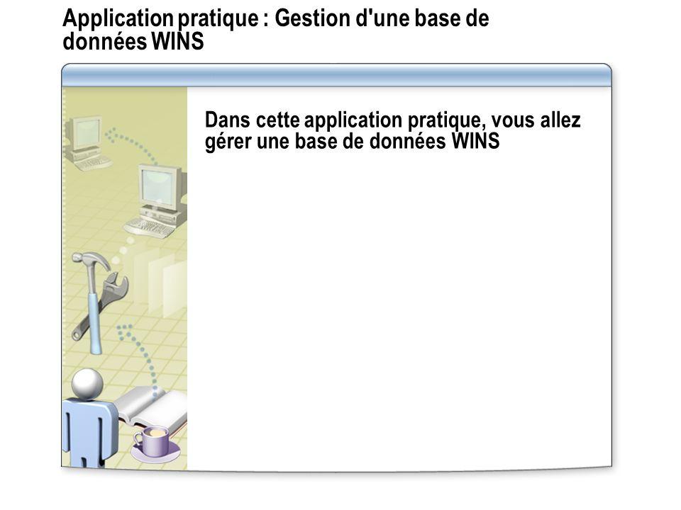Application pratique : Gestion d une base de données WINS