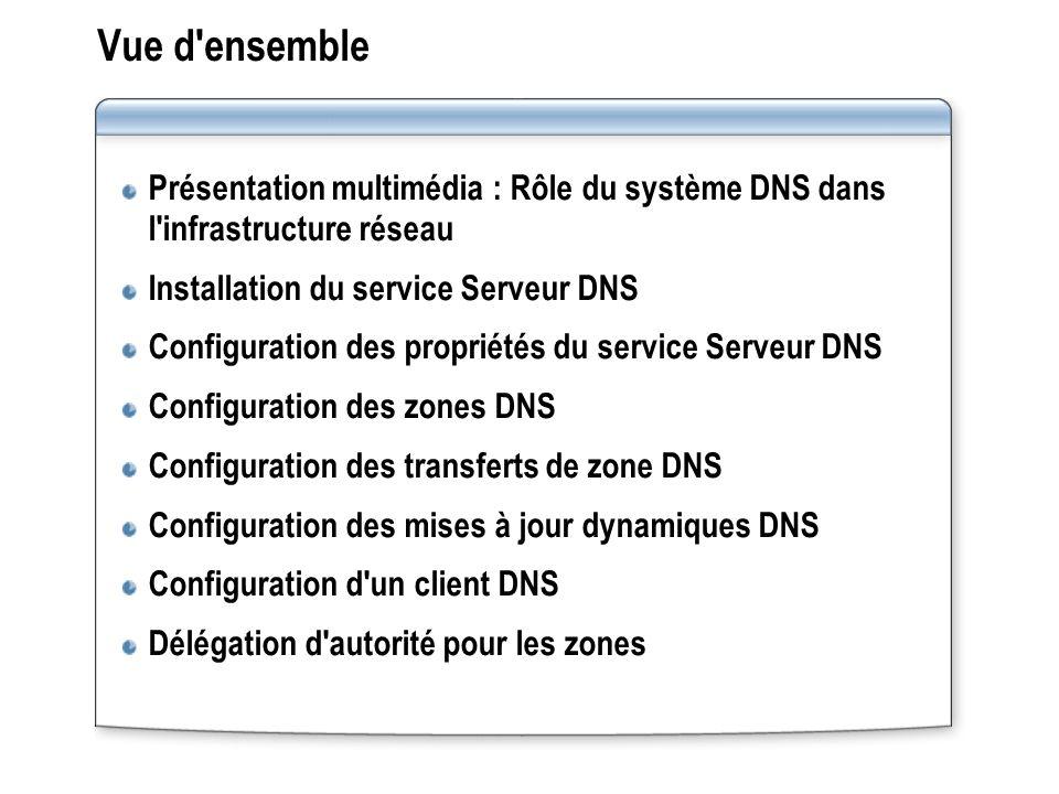 Vue d ensemble Présentation multimédia : Rôle du système DNS dans l infrastructure réseau. Installation du service Serveur DNS.