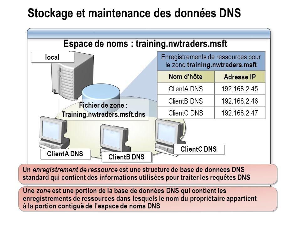 Stockage et maintenance des données DNS