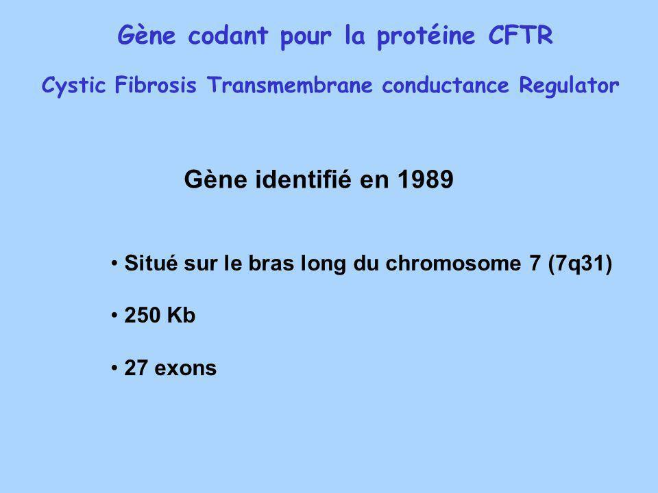 Gène codant pour la protéine CFTR