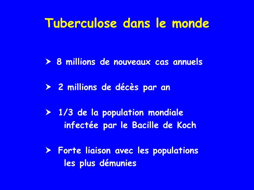 Tuberculose dans le monde