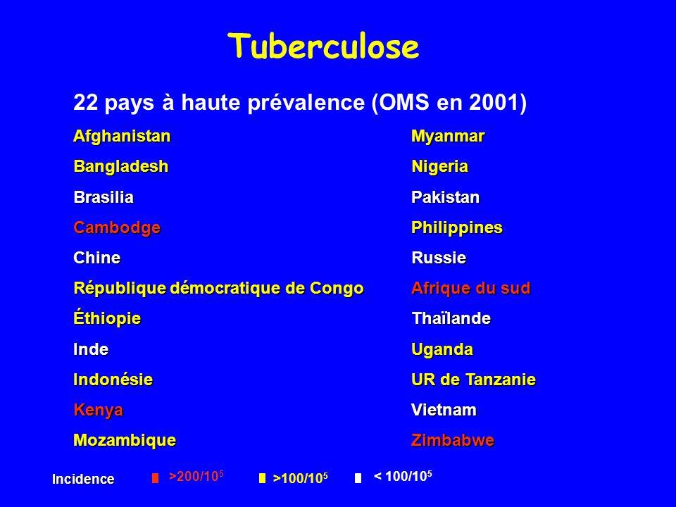 Tuberculose 22 pays à haute prévalence (OMS en 2001)
