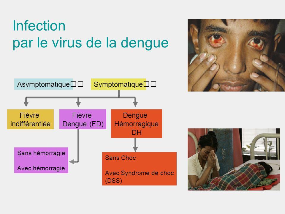 par le virus de la dengue