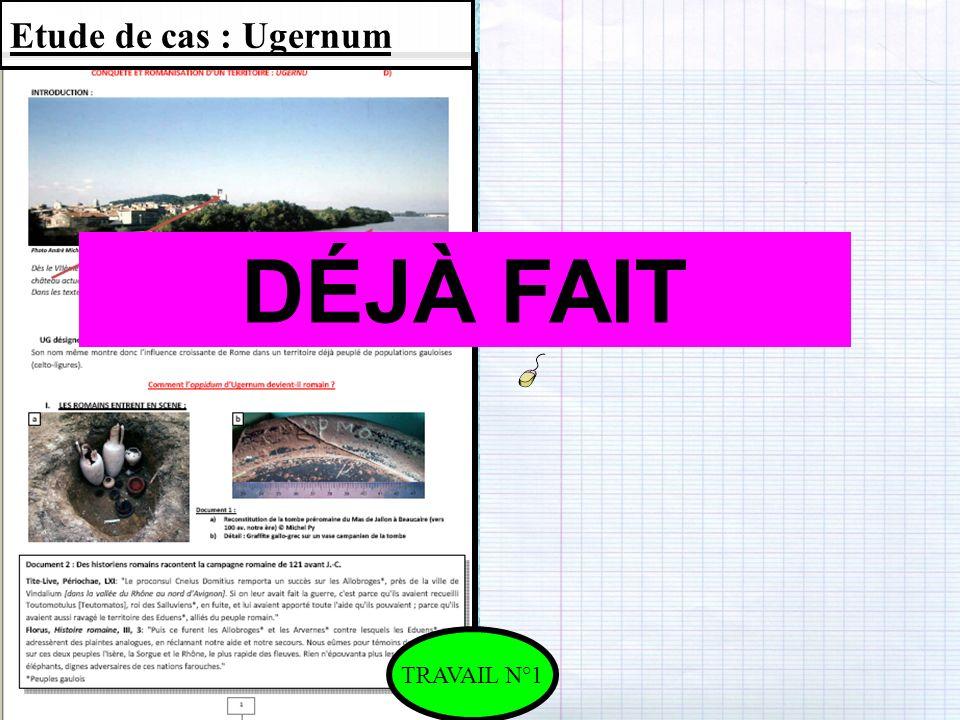 Etude de cas : Ugernum DÉJÀ FAIT TRAVAIL N°1