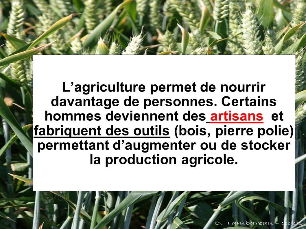 L'agriculture permet de nourrir davantage de personnes