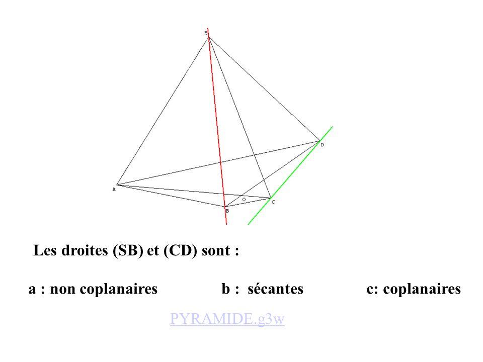 Les droites (SB) et (CD) sont :