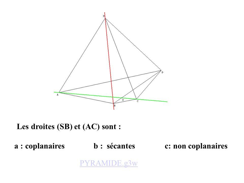 Les droites (SB) et (AC) sont :