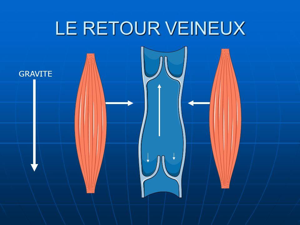 LE RETOUR VEINEUX GRAVITE