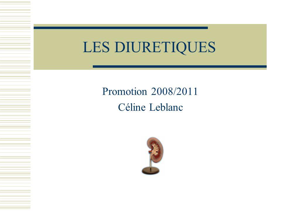 Promotion 2008/2011 Céline Leblanc
