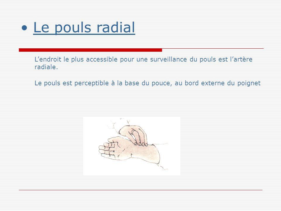 Le pouls radial L'endroit le plus accessible pour une surveillance du pouls est l'artère radiale.