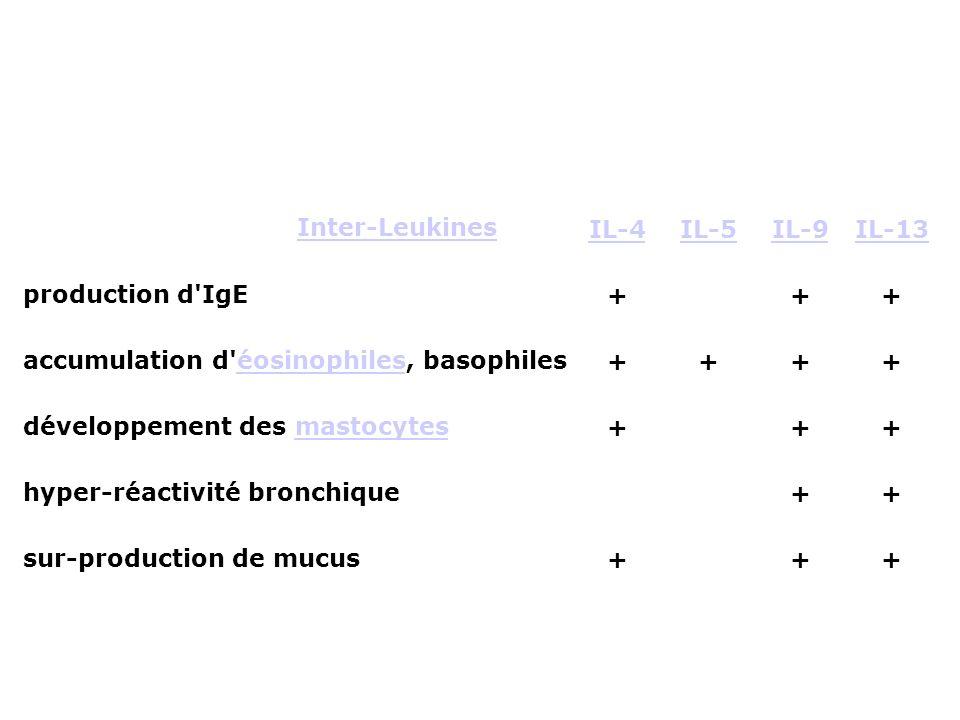 accumulation d éosinophiles, basophiles développement des mastocytes