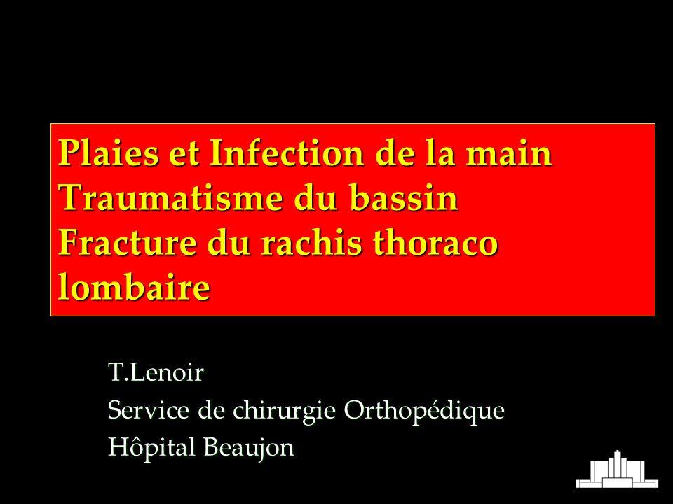 T.Lenoir Service de chirurgie Orthopédique Hôpital Beaujon