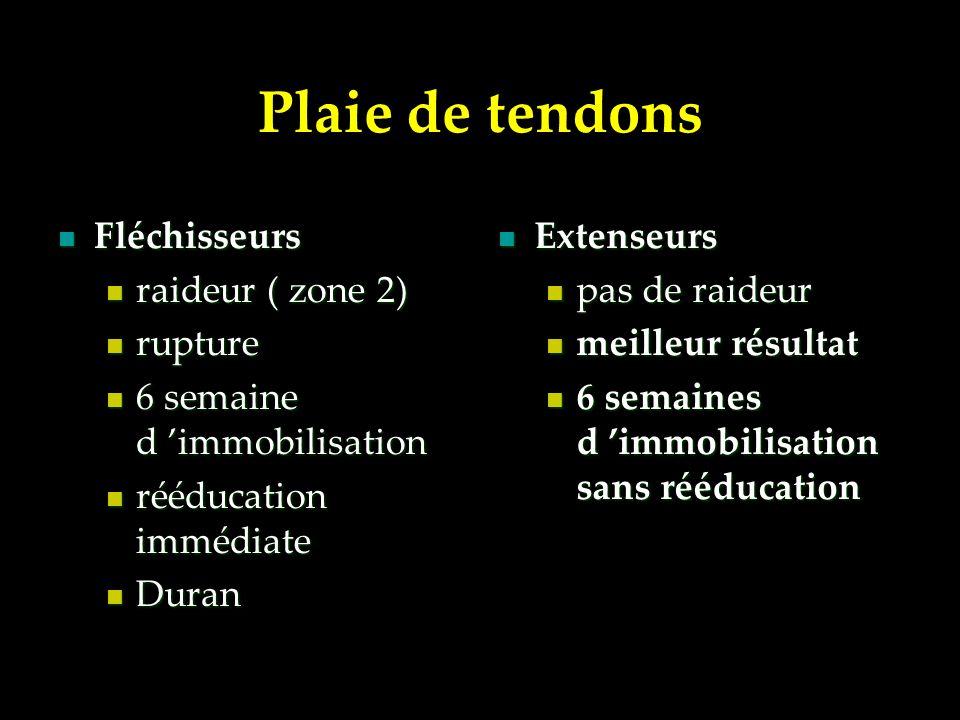 Plaie de tendons Fléchisseurs raideur ( zone 2) rupture