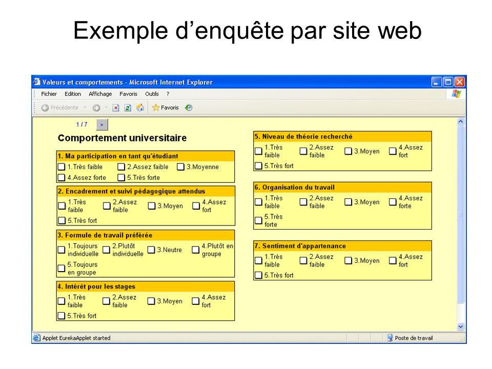 Exemple d'enquête par site web