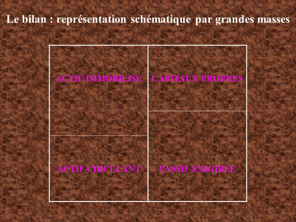 Le bilan : représentation schématique par grandes masses