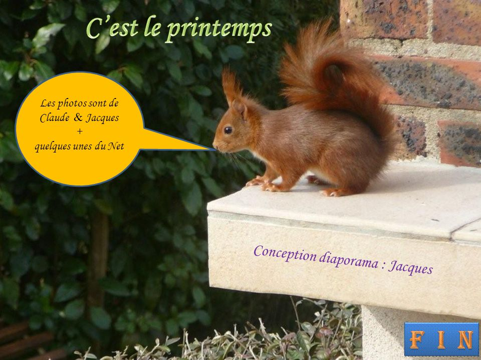 C'est le printemps Conception diaporama : Jacques