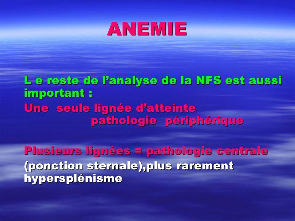 ANEMIE L e reste de l'analyse de la NFS est aussi important :