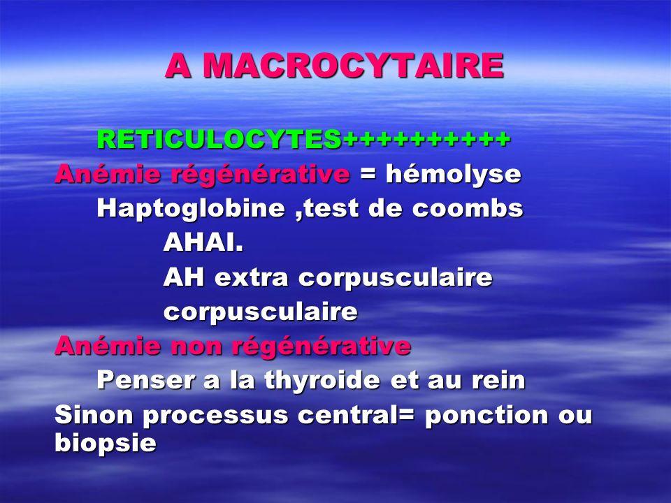 A MACROCYTAIRE RETICULOCYTES++++++++++ Anémie régénérative = hémolyse