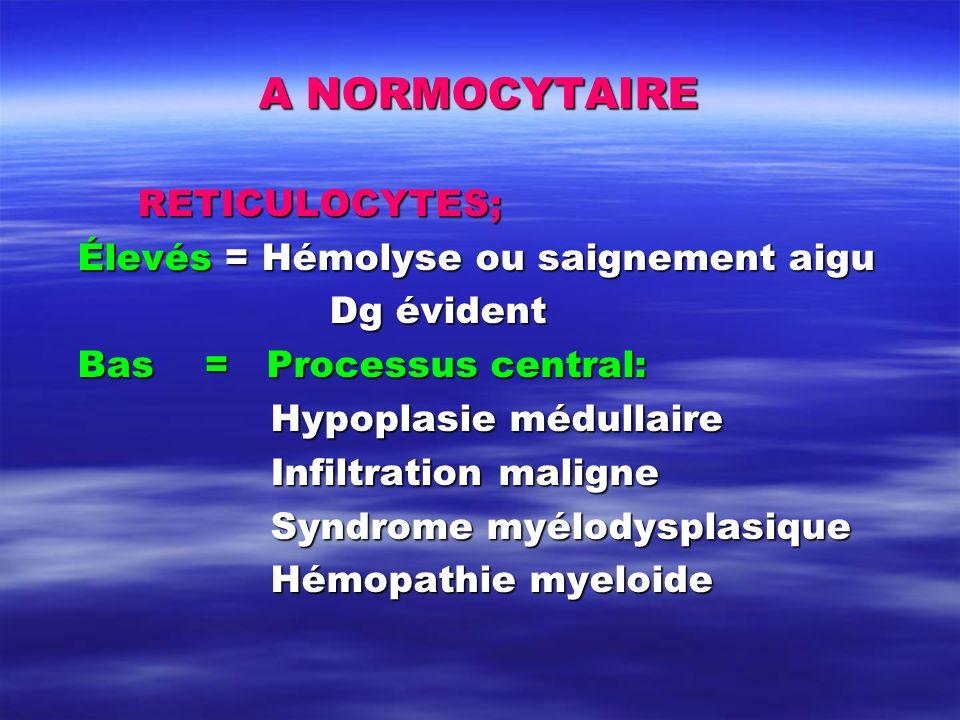 A NORMOCYTAIRE RETICULOCYTES; Élevés = Hémolyse ou saignement aigu