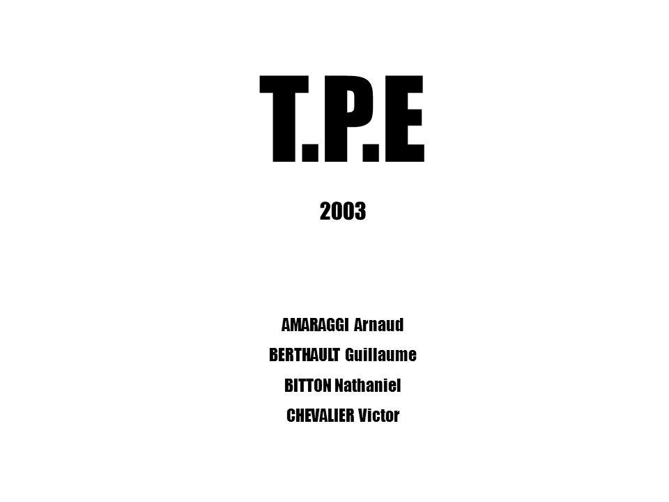 T.P.E 2003 AMARAGGI Arnaud BERTHAULT Guillaume BITTON Nathaniel