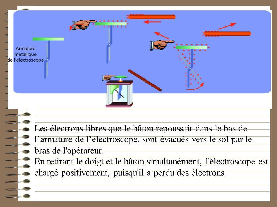 Les électrons libres que le bâton repoussait dans le bas de l'armature de l'électroscope, sont évacués vers le sol par le bras de l opérateur.
