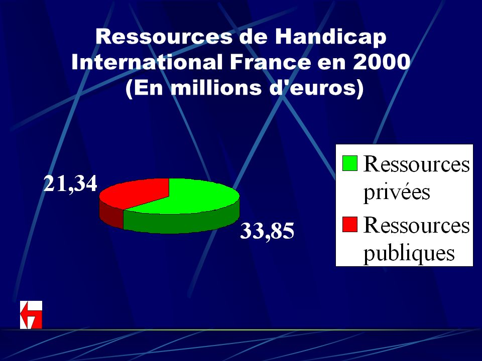 Ressources de Handicap International France en 2000 (En millions d euros)
