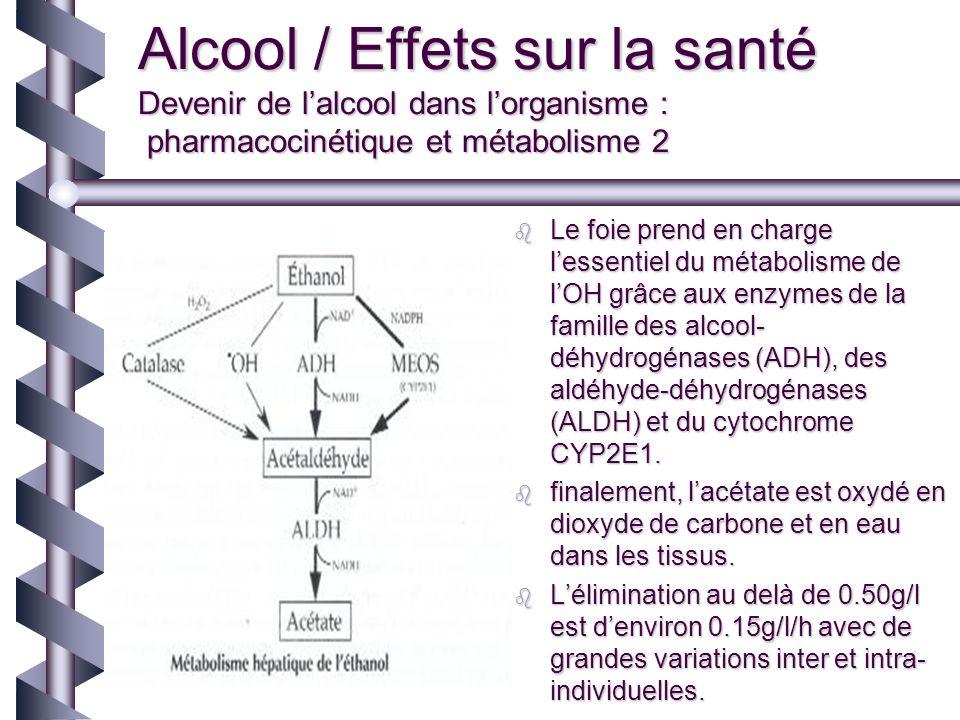 Alcool / Effets sur la santé Devenir de l'alcool dans l'organisme : pharmacocinétique et métabolisme 2