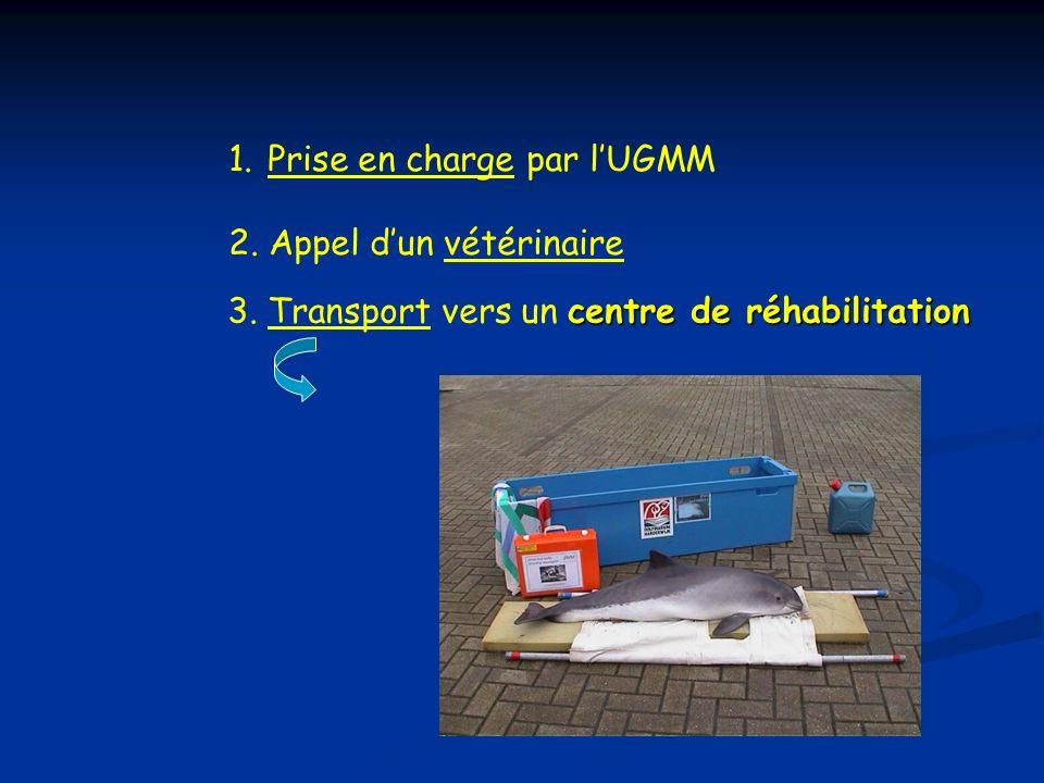 Prise en charge par l'UGMM 2. Appel d'un vétérinaire