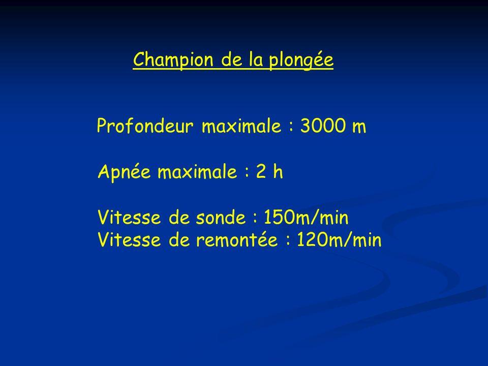 Profondeur maximale : 3000 m Apnée maximale : 2 h